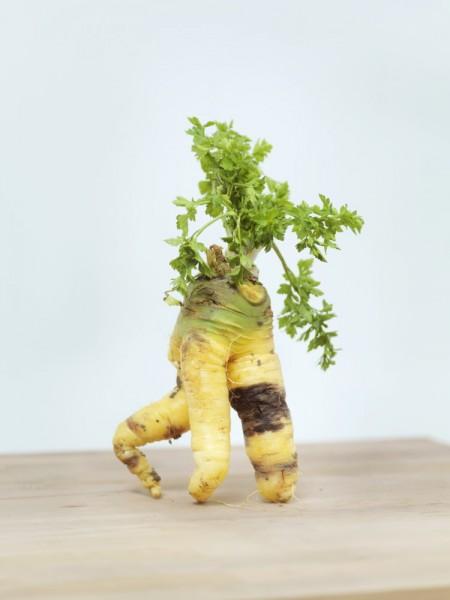 ©Emmanuel Pierrot - Legumes 3