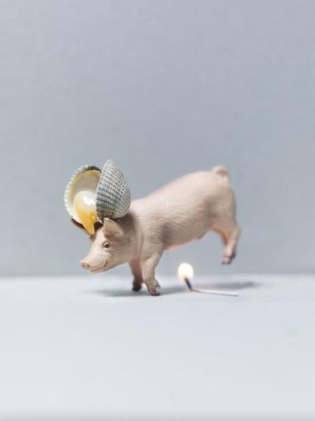 ©Emmanuel Pierrot - cochon a la coq 1