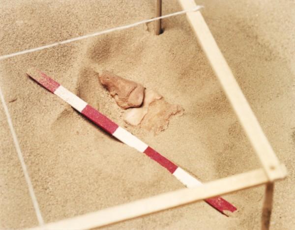 ©Emmanuel Pierrot - archeologie du pied de cochon 2