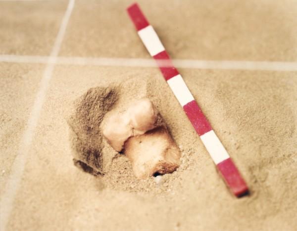 ©Emmanuel Pierrot - archeologie du pied de cochon 4