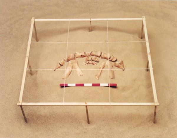 ©Emmanuel Pierrot - archeologie du pied de cochon 7