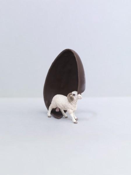 ©Emmanuel Pierrot - cochon a la coq 3